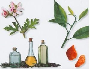 aromatherapyaa
