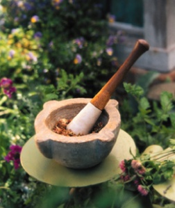 Mortar and Pestle in Herb Garden