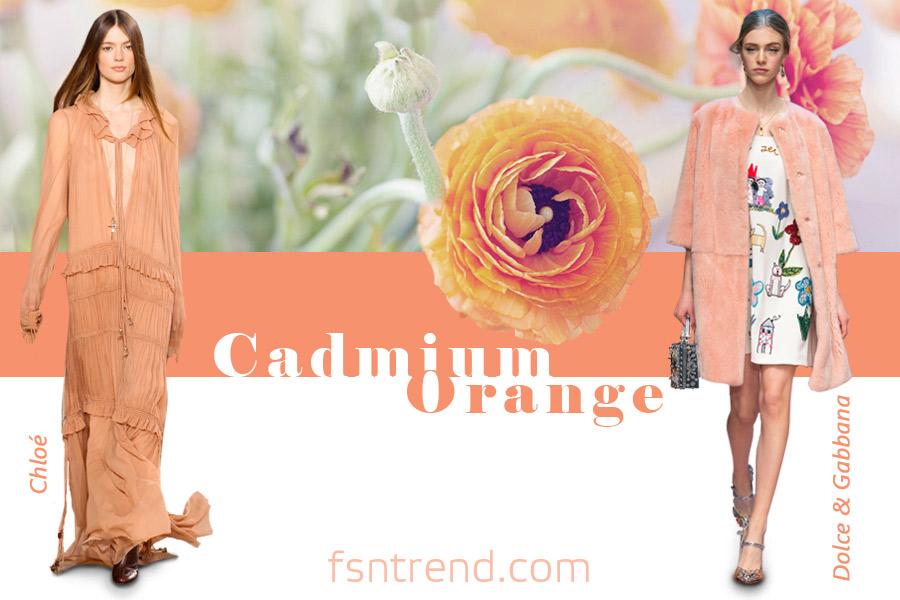 19-modnye-cveta-osen-cadmium-orange
