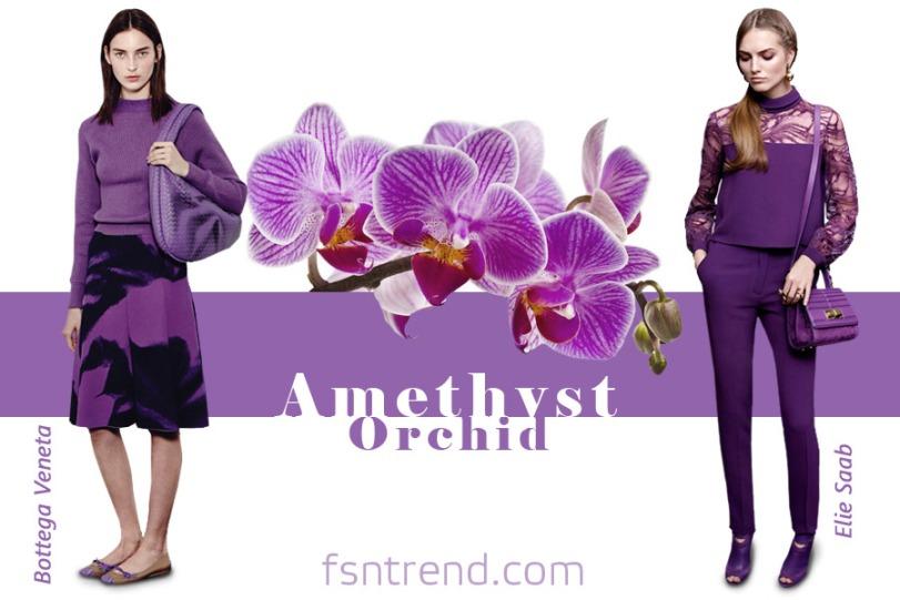 24-modnye-cveta-osen-amethyst-orchid